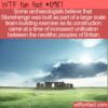 WTF Fun Fact – Stonehenge Theory