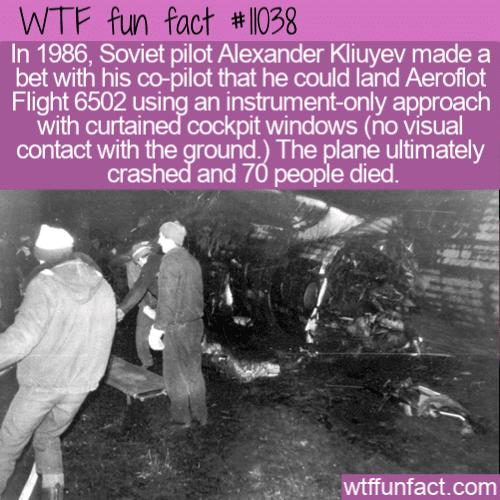 WTF Fun Fact - Aeroflot Flight 6502