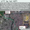 WTF Fun Fact – Bruges Beer Pipeline