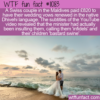 WTF Fun Fact – Foreign Marriage Vows