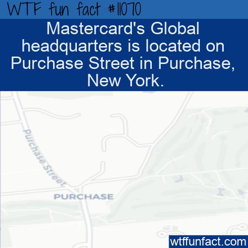 WTF Fun Fact - Mastercard HQ