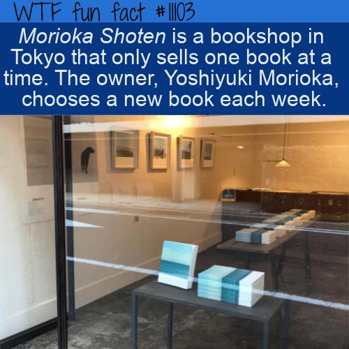 WTF Fun Fact - Morioka Shoten Book Store