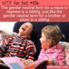 WTF Fun Fact – Nibling