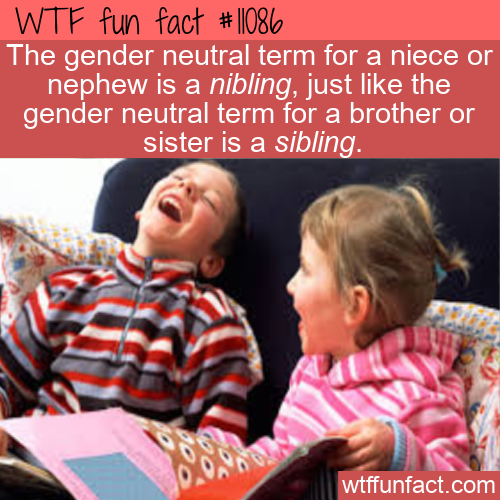 WTF Fun Fact - Nibling & Sibling