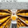 WTF Fun Fact – Parmesan Cheese Backed Bonds