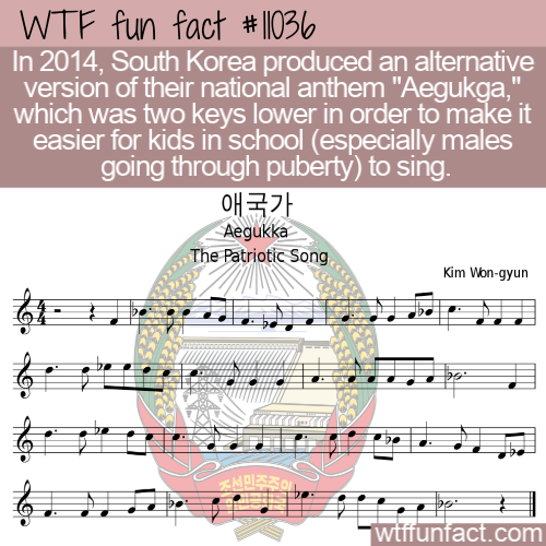 WTF Fun Fact - Revised Aegukga