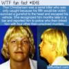 WTF Fun Fact – The Mad Dane