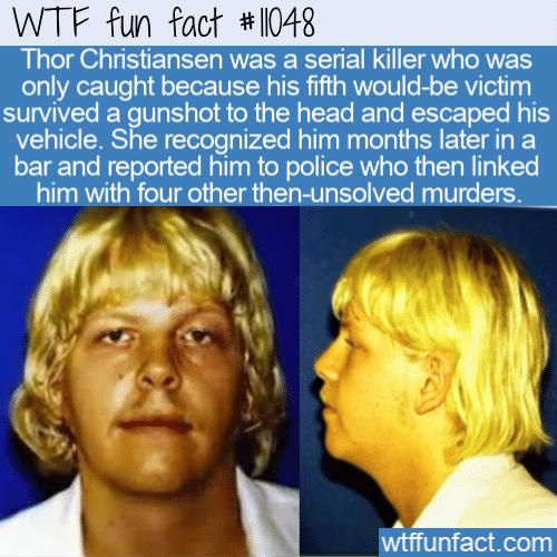 WTF Fun Fact - The Mad Dane