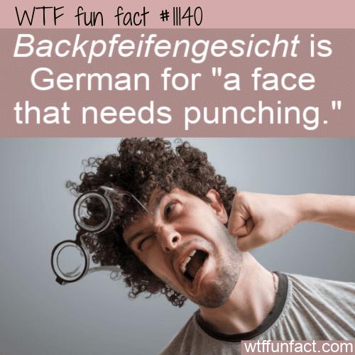 WTF Fun Fact - Backpfeifengesicht