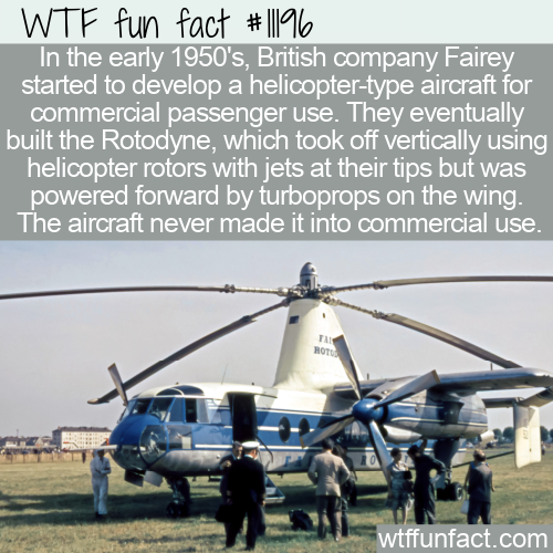 WTF Fun Fact - Fairey Rotodyne