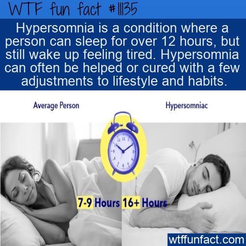 WTF Fun Fact - Hypersomnia