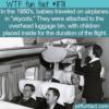 WTF Fun Fact – Skycots