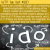 WTF Fun Fact – Ablaut Reduplication