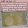 WTF Fun Fact – Cheese Brine On Roads