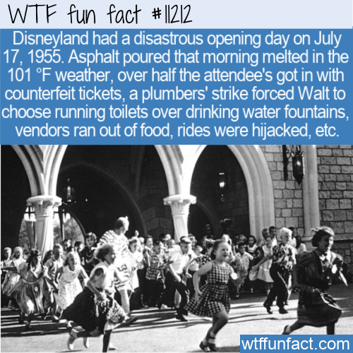 WTF Fun Fact - Disneyland's Black Sunday
