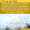 WTF Fun Fact – Eugene Schieffelin