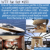 WTF Fun Fact – The Golden Yacht