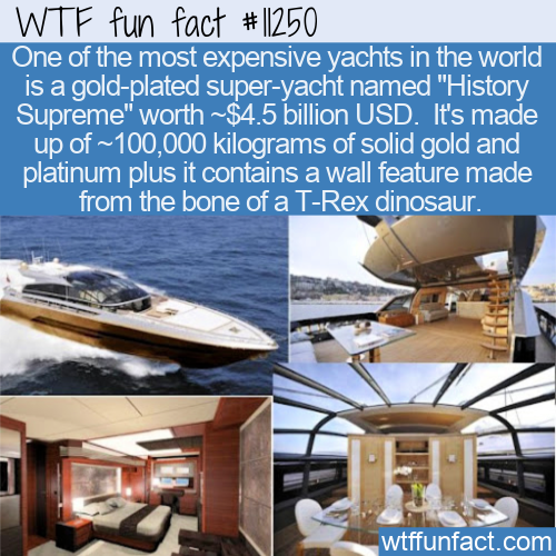 WTF Fun Fact - Golden Yacht