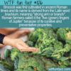 WTF Fun Fact – Five Green Fingers Of Jupiter