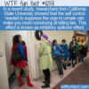 WTF Fun Fact – Having To Pee Makes You  A Better Liar