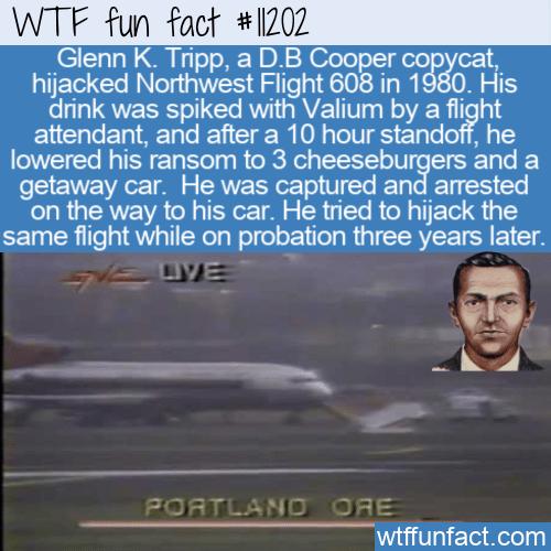 WTF Fun Fact - Hijacker Glenn Tripp