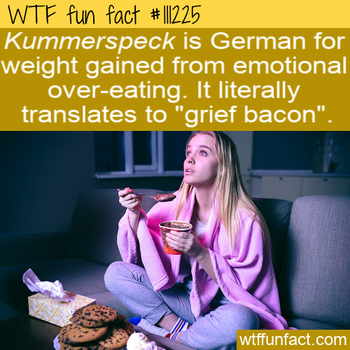 WTF Fun Fact - Kummerspeck