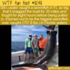WTF Fun Fact – Record-Breaking Swordfish