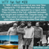 WTF Fun Fact – Survivors In Too Good Of Shape