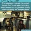 WTF Fun Fact – Velociraptor Or Tortoises Mating