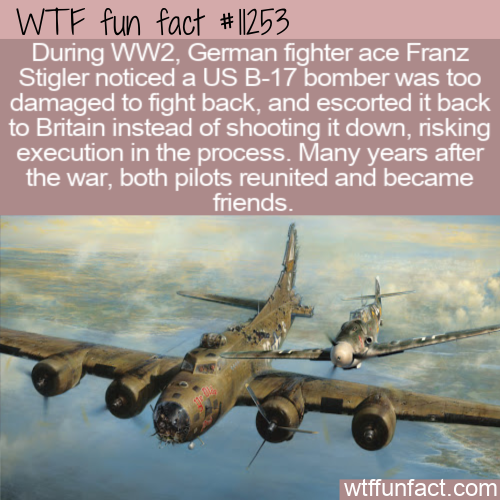 WTF Fun Fact - WW2 A Code Of Honor