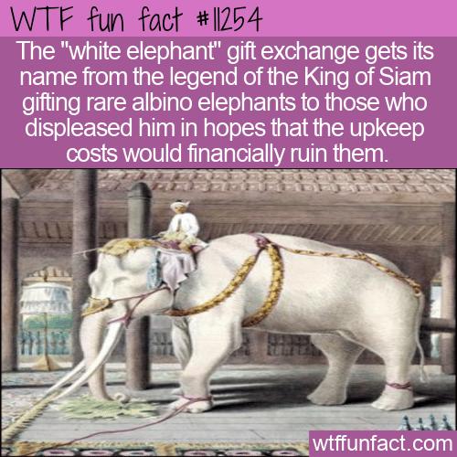 WTF Fun Fact - White Elephant Gift Exchange