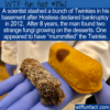 WTF Fun Fact – A Mummified Twinkie