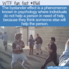 WTF Fun Fact – Bystander Effect