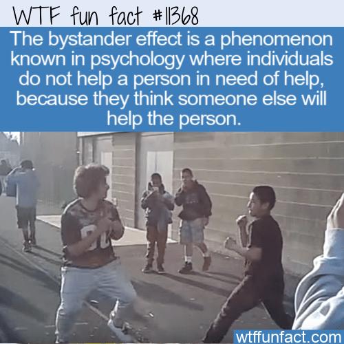 WTF Fun Fact - Bystander Effect