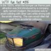 WTF Fun Fact –  Dodgem Not Bumpem Cars