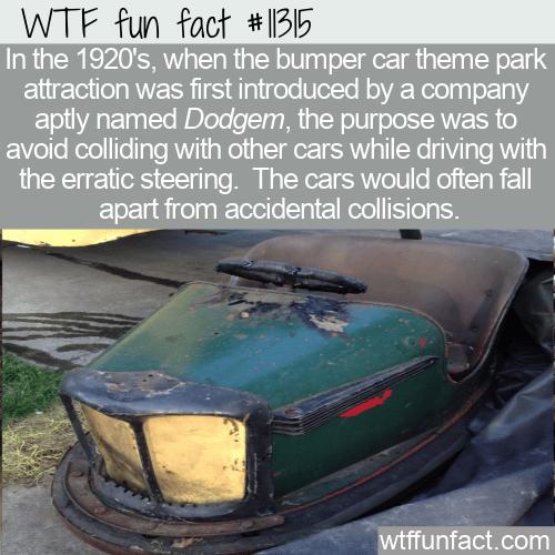 WTF Fun Fact - Dodgem Not Bumpem Cars