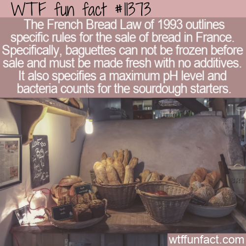 WTF Fun Fact - French Bread Law