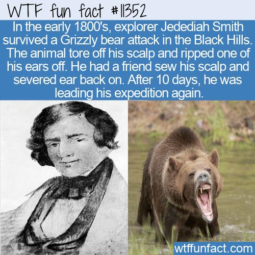 WTF Fun Fact - Jedediah Smith