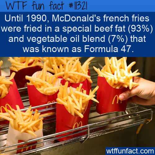 WTF Fun Fact - McDonald's Fries Secret Formula