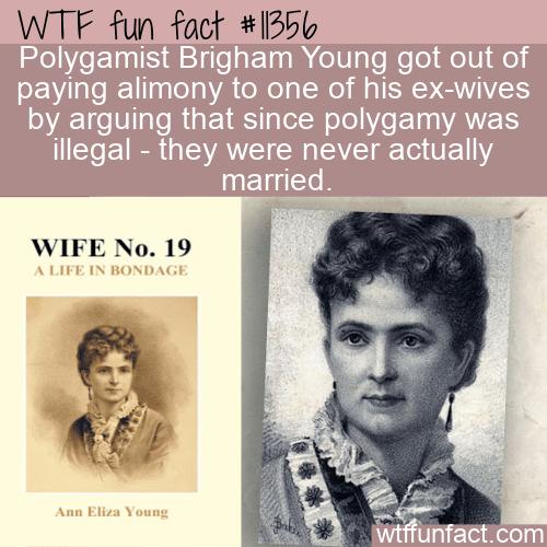 WTF Fun Fact - No Polygamy No Alimony