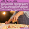 WTF Fun Fact – Pizza Cheese Domination