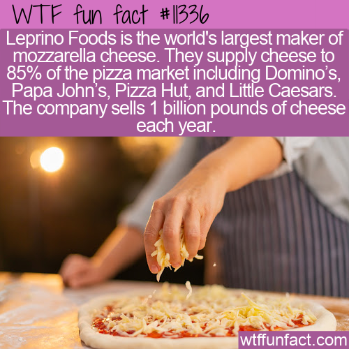 WTF Fun Fact - Pizza Cheese Domination