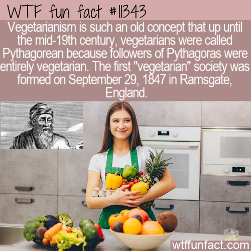 WTF Fun Fact - Pythagorean Then Vegetarian