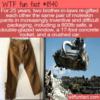 WTF Fun Fact – Re-gifted Moleskin Pants