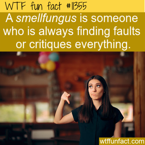 WTF Fun Fact - Smellfungus