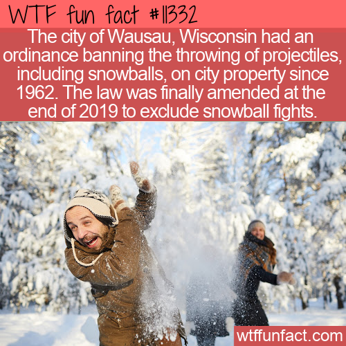 WTF Fun Fact - Snowball Fight Ban Overturned
