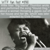 WTF Fun Fact – Big Mama's Hound Dog