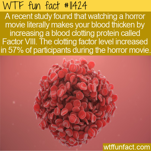 WTF Fun Fact - Bloodcurdling Horror Movies