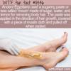 WTF Fun Fact – Body Sugaring