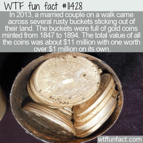 WTF Fun Fact - Buried Treasure In A Backyard